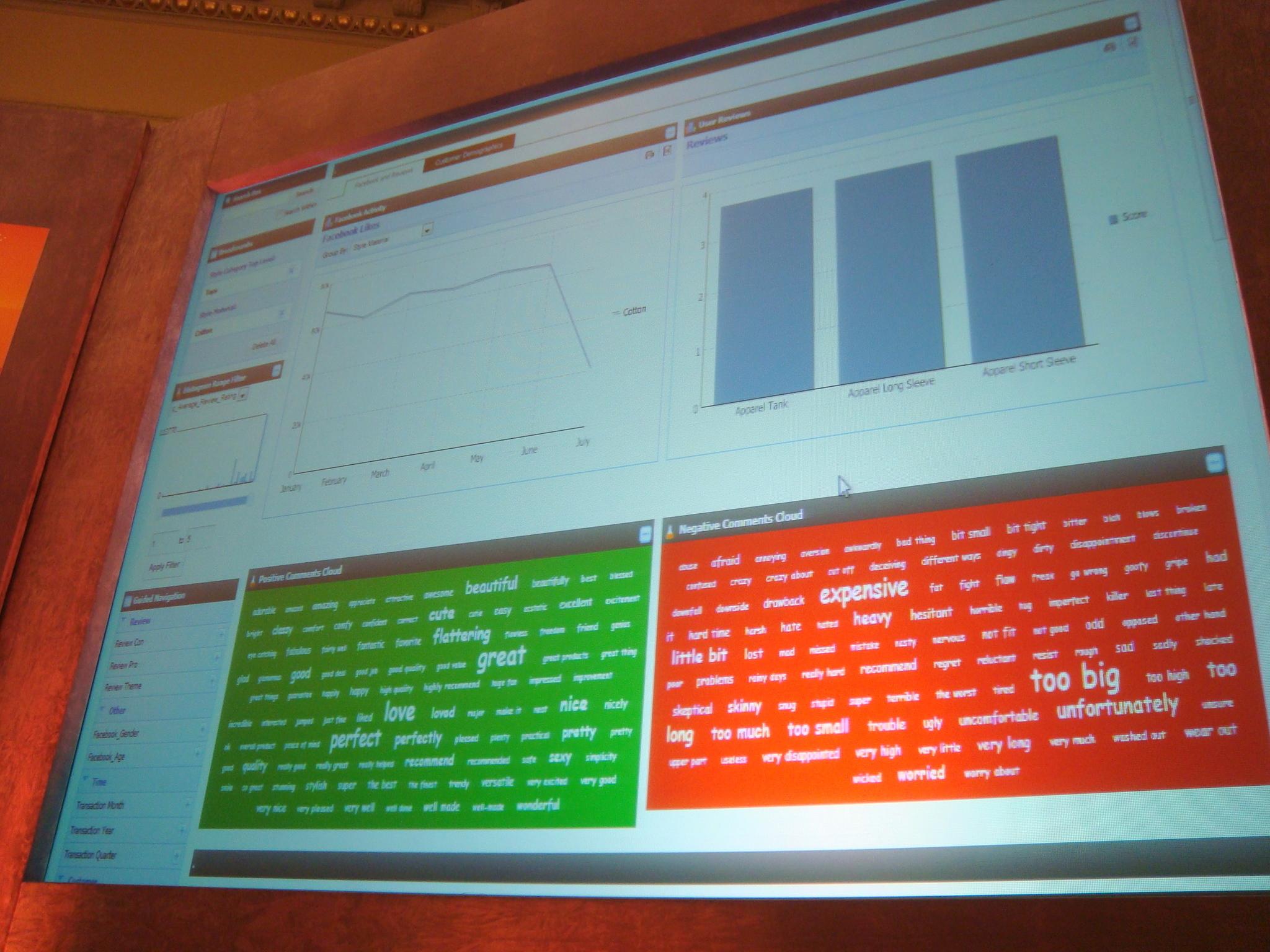 Endeca-Analytics-Latitude-eBusiness-Forum-2011