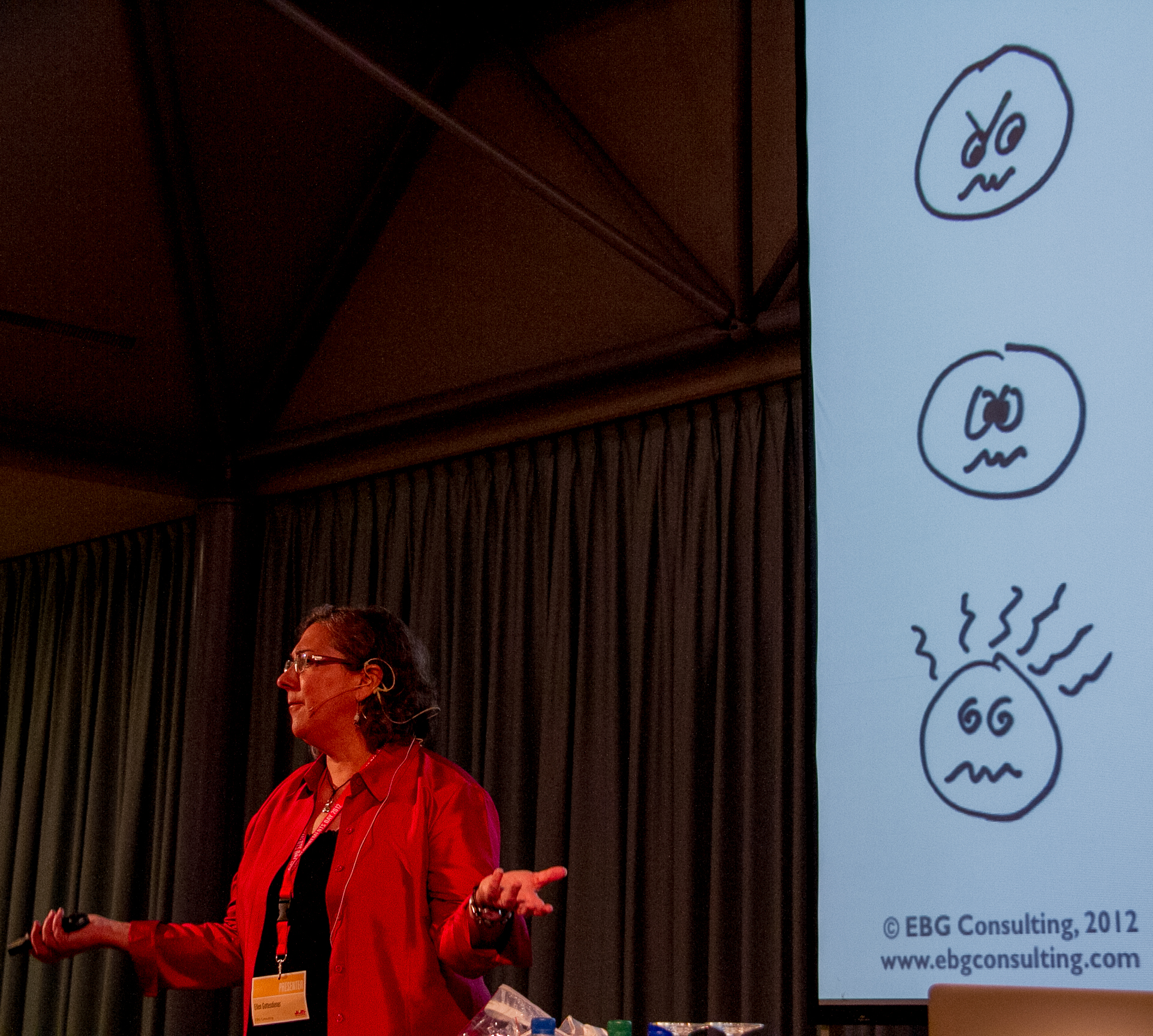 Ellen Gottesdiener from EBG Consulting at the Swiss Requirements Day 2012